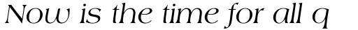 Americana Std Italic sample