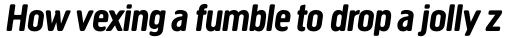 Creighton Pro Bold Italic sample