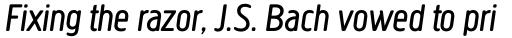 Creighton Pro Book Italic sample