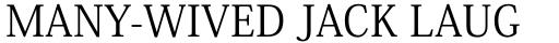 Ryo Text PlusN Regular sample