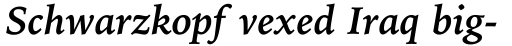 Iowan Old Style BT Pro Bold Italic sample