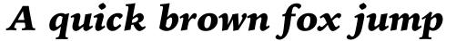 Iowan Old Style BT Pro Black Italic sample