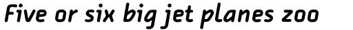 FF Alega Pro Bold Italic sample