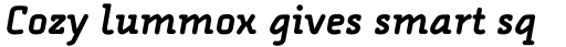 FF Alega Serif Pro Bold Italic sample