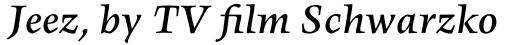 FF Angkoon Std Medium Italic sample