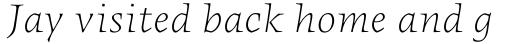 FF Angkoon Std Light Italic sample