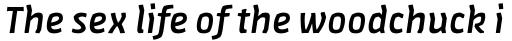 FF Amman Sans Pro Medium Italic sample