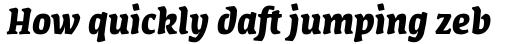 FF Amman Serif Pro Bold Italic sample
