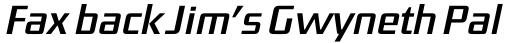 FF District Std Regular Italic sample