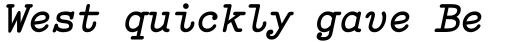 FF Elementa Pro Bold Italic sample