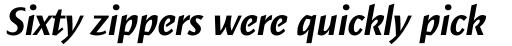 Elemental Sans Pro Bold Italic sample