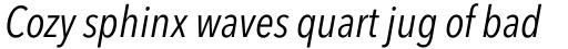 Avenir Next Pro Condensed Italic sample