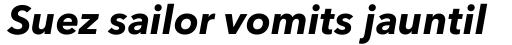 Avenir Next Pro Bold Italic sample