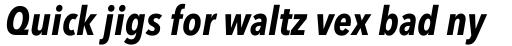 Avenir Next Pro Condensed Bold Italic sample