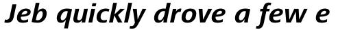 Frutiger Next Pro Bold Italic sample