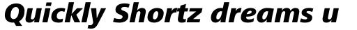 Frutiger Next Pro Heavy Italic sample