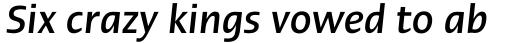 Linotype Ergo Pro Medium Condensed Italic sample