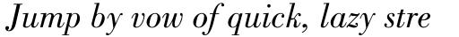 Bodoni Pro Book Italic sample