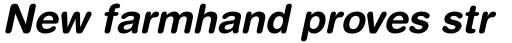 Helvetica Rounded Bold Oblique sample
