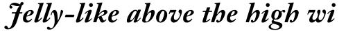 Janson Text Pro 76 Bold Italic sample