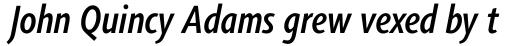 Agilita Pro Condensed Medium Italic sample