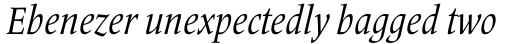 Frutiger Serif Pro Condensed Italic sample
