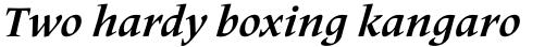 Frutiger Serif Pro Bold Italic sample