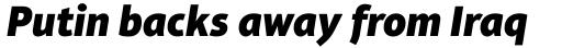Aptifer Sans Pro Black Italic sample