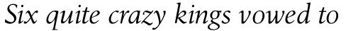 Birka Pro Italic sample