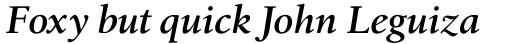 Birka Pro Semi Bold Italic sample
