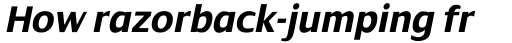 Dialog Pro Bold Italic sample
