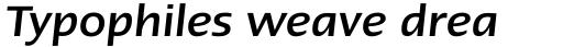 Linotype Ergo Paneuropean Medium Italic sample