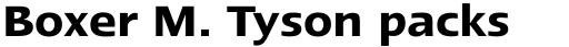 Linotype Ergo Paneuropean Demi Bold sample