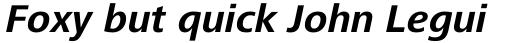 Frutiger Next Paneuropean Bold Italic sample