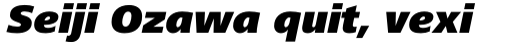 Frutiger Next Paneuropean Black Italic sample