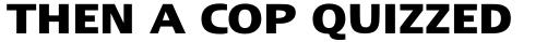 Linotype Ergo Greek Bold sample