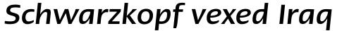 Linotype Ergo Cyrillic Medium Italic sample