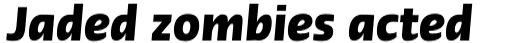 Linotype Ergo Cyrillic Bold Italic sample