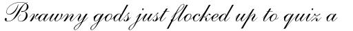 Shelley Script Pro Regular sample