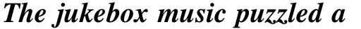 Times Bold Italic sample