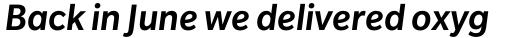 Slate Medium Italic sample