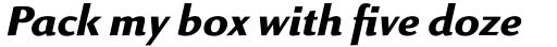 Linex Sans Pro Bold Italic sample