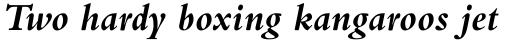 Bembo Pro Bold Italic sample