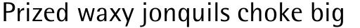 Rotis Semi Sans Pro 55 Regular sample