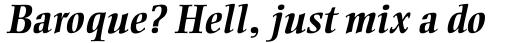 Ellington Std Bold Italic sample