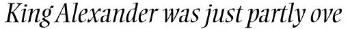 Ellington Std Light Italic sample