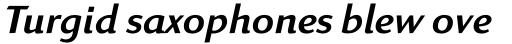 Linex Sans Std Italic sample