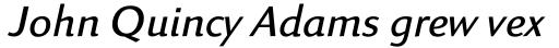 Linex Sans Std Light Italic sample