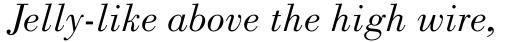 Monotype Bodoni Std Book Italic sample