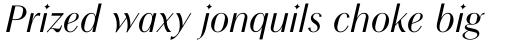 Chong Modern Std Italic sample